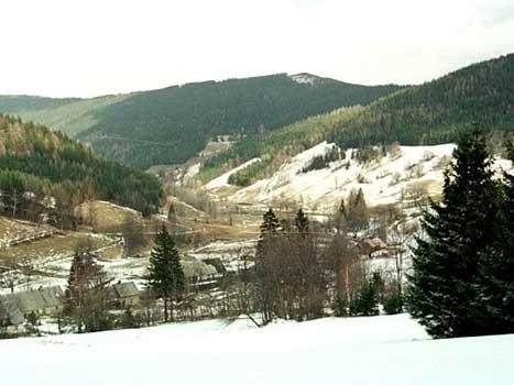 Dolina Bielic